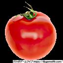 Patron トマト