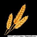 Patron 小麦